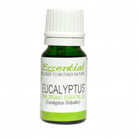 Eucalyptus Essential Oil (Organic) Pure by Mother Nature's Goodies