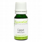Organic Cajeput Essential Oil  Pure & Natural 10 ml Aromatherapy
