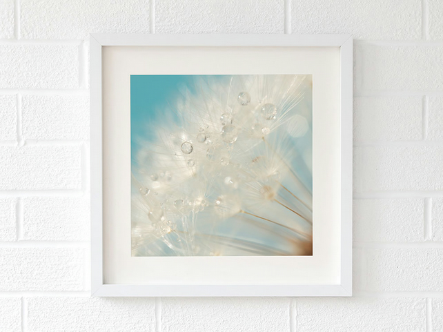 Raindrop dandelion print - bathroom wall art - dandelion seed head art print