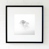 Tree wall art print - Minimalist black and white fine art photography