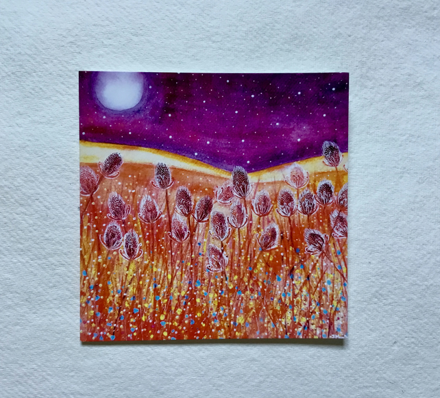 Teasels, blank greetings card