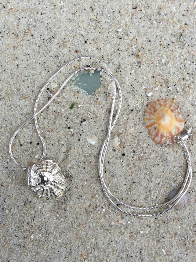 Limpet Shell Necklace, cast in Reflections Sterling Silver