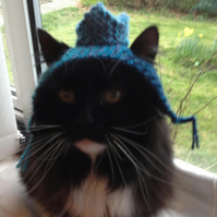 Knitted Blue Glitter Crown Hat for Cats