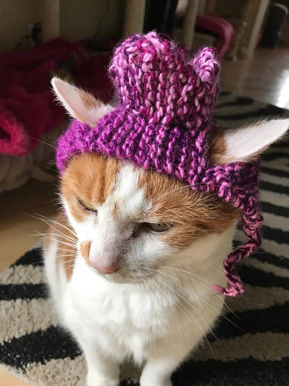 Knitted Pink Glitter Crown Hat for Cats