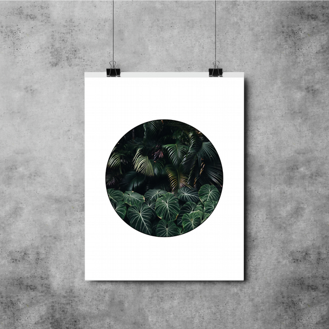 Botanical Circle Leaf Print - A3