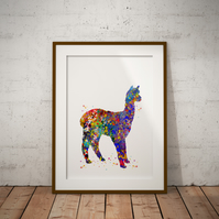 Alpaca Watercolor Print Wall Art