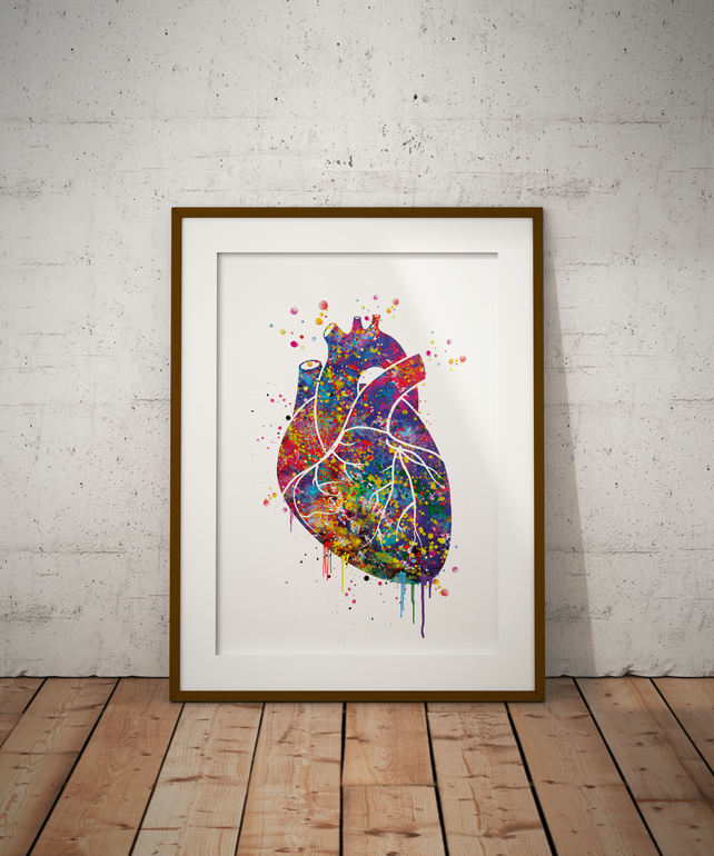 Heart Anatomy Watercolour Print Wall Art