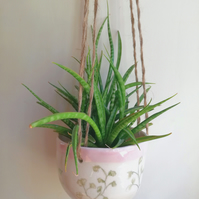 Ceramic hanging planter botanical drawings and pink rim or herb pot - gift