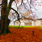 AUTUMN AT CASTLE COOLE