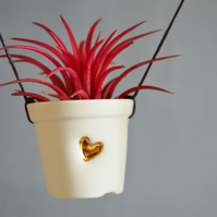 Ceramic Porcelain- Hanging Mini Gold Heart Pot