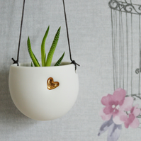 White Hanging Planter with Gold Embossed Heart with small plant