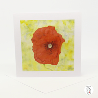 Red Poppy Greeting Card - Blank - Birthday Card