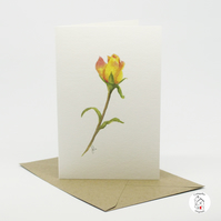 Rose Greeting Card Watercolour Botanical Card Hand Designed By CottageRts