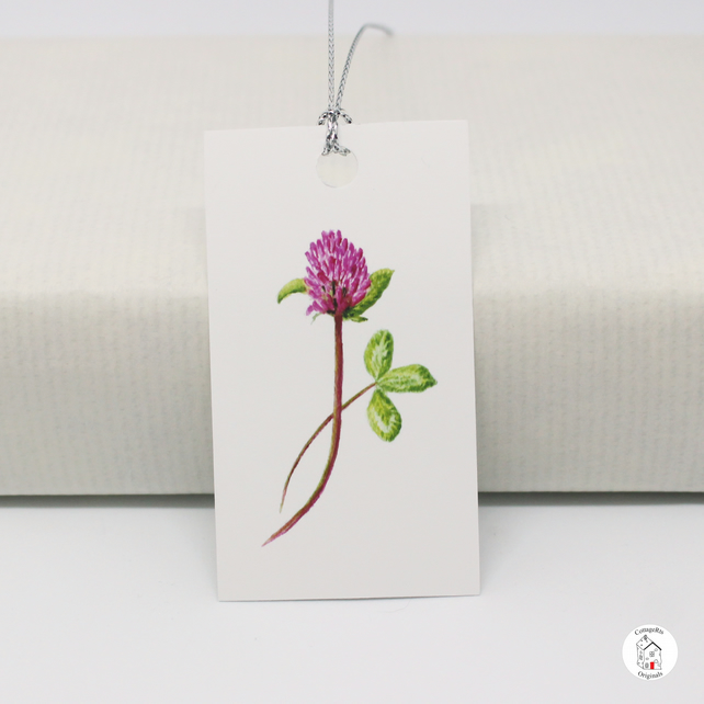 Red Clover Flower Gift Tags, Print of Original Hand Painted Design, Pack of 6