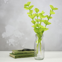 Paper Eucalyptus Decorative Foliage - Spring Green