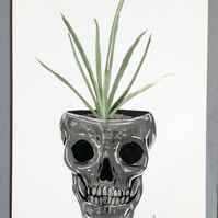 Skull Plant Pot Illustration - A5 Digital Giclee Print