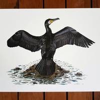 A4 Cormorant Painting Print - Bird Illustration