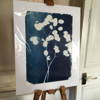 Cyanotype Large Mount (1)