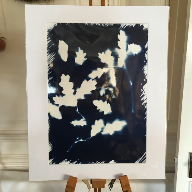 Cyanotype Large Mount (2)