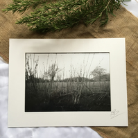 Silver Gelatin Print - Box Brownie Camera - Adderbury, Oxfordshire - Mounted