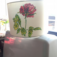 Hand painted on cream drum lampshade