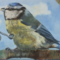 Blue Bandit - original oil painting of Blue Tit  by Lisa Furness