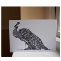 Peacock A5 Blank Greeting Card, Pack of 4 Cards