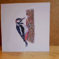 Handdrawn Woodpecker Square Blank Card and Pack of 4 Cards