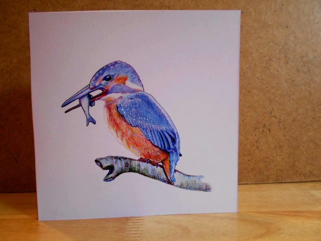 Handdrawn Kingfisher Square Blank Card and Pack of 4 Cards