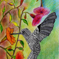 A4 Hummingbird Digital Print Handdrawn, Special Offer