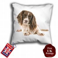 English Springer Spaniel, Springer Cover, Brown and White Spaniel Cushion Cover,