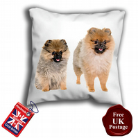 Pomeranian Cushion Cover, Brown Dog Cover,
