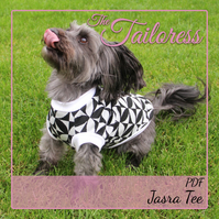 Toby Jersey Raglan Sleeve Jumper for Dogs PDF Sewing Pattern Size 4