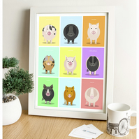 Pig Breeds (Coloured Background) - British Livestock Series