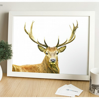 Scottish Stag - Modern Digital Painting