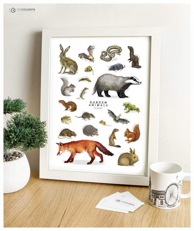 Garden Animals - British Fauna Collection