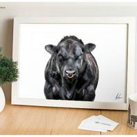 Aberdeen Angus Bull Painting, Scotland Cattle, Cow Print, Animal Art, Farm Art