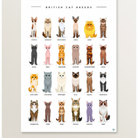 Cat Breeds, Cats Print, Cat Poster, Cat Lover, Cat Gift, Cat Artwork