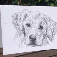 Ink sketch of a curious Labrador puppy printed on a blank card. Free UK p&p
