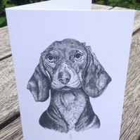 Gorgeous greeting card from an original ink pet portrait of Albert the Daschund