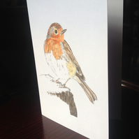 Christmas card - Ink, watercolour sketch of a friendly, festive robin. Free p&p