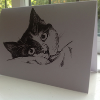 A purfect card for cat lovers of an ink sketch of Sylvester the lounging cat