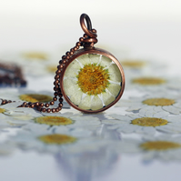Handmade Copper Pipe Pendant featuring pressed Snowcap Daisy
