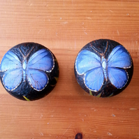 Butterfly (Holly blue) pyrography wooden drawer knobs (a set of 2)