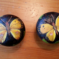 Butterfly (clouded yellow) pyrography wooden drawer knobs (a set of 2)