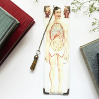 Vegan bookmarks,medical student bookmark, anatomy boomark.