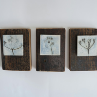 Set of 3 cow parsley  printed ceramic tiles. Mounted on recycled vintage wood.