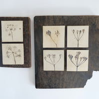 Set of 2 cow parsley ceramic printed tiles. Mounted onto recycled vintage wood.