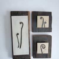 Set of 3 Beautiful unfolding fern tiles, mounted onto vintage recycled wood
