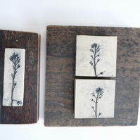 Set of 2 x 3 forget me not printed tiles, Mounted onto vintage recycled wood.